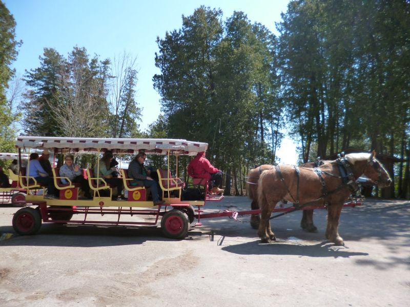 マキナックアイランド 観光馬車ツアー