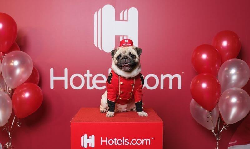 ホテルズドットコムhotels.com